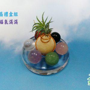 2019-8-20-七種空氣鳳梨_空氣鳳梨水晶禮盒組